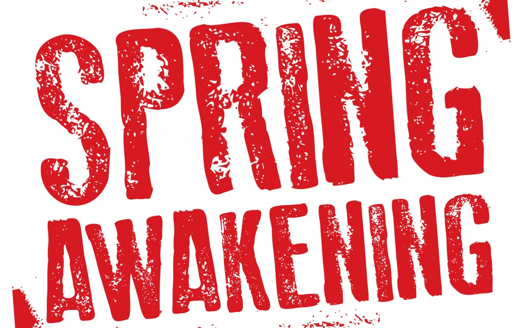 Historical Context & Contemporary Issues: Spring Awakening at Bootless Stageworks